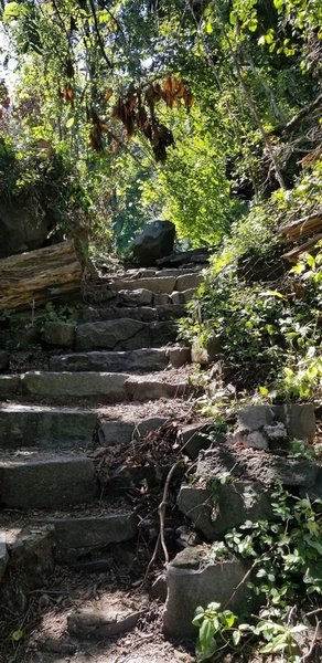 Stone path and stairs after entering the Carpenter's Trail. Ascent after Shore Trail.