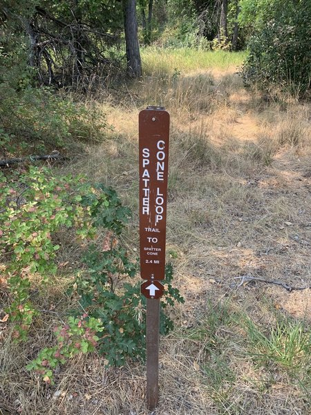Sign at Spatter Cone Loop Trailhead