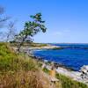 The Ocean Loop Trail