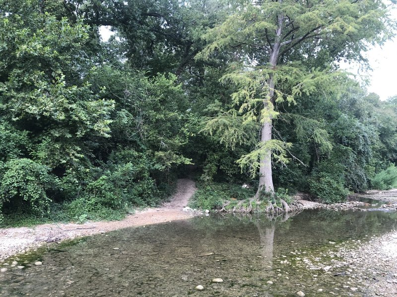One of countless views of the Onion Creek.
