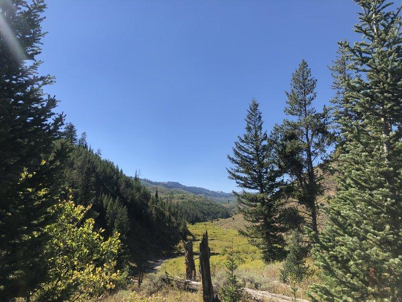 Trail #457