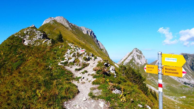 Trail to mountain Gantrisch.