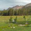 Meadow beneath Mt. Kaweah and junction between the Moraine Lake and High Sierra trails.