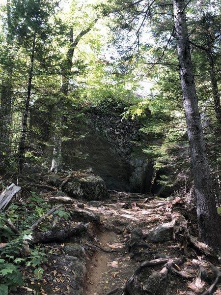 You'll pass through a small boulder field on the way up the Sugarloaf Trail