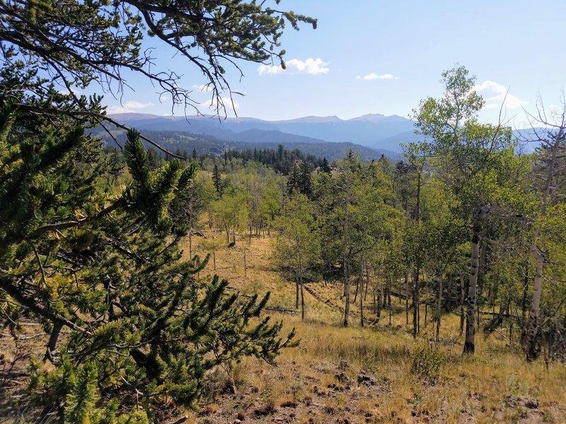 Views of Kenosha Mountains