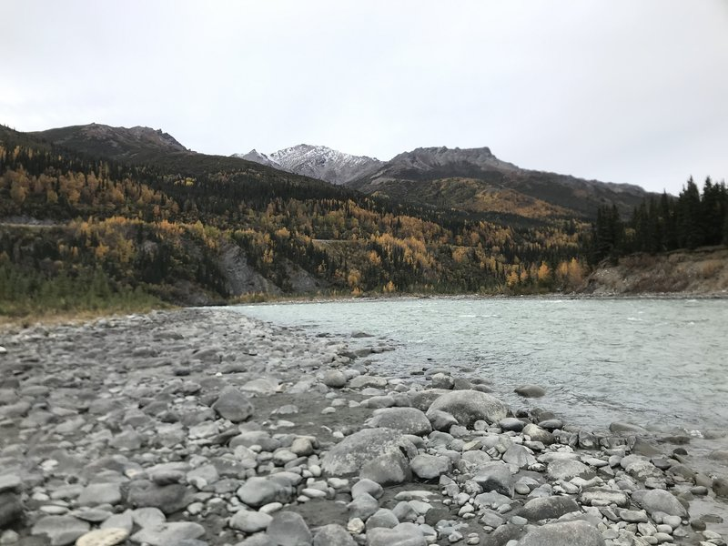 Walk out to the rushing waters of the Nenana River on northside of this trail!