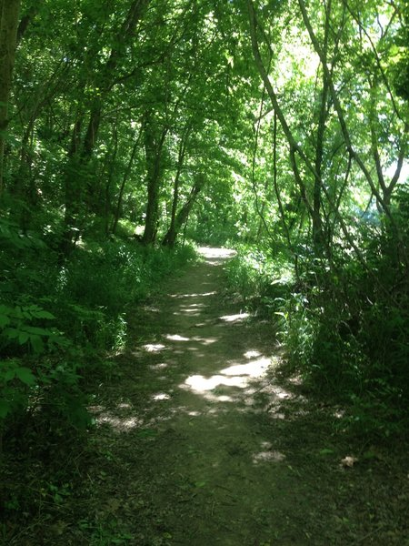 Two Bridges Trail