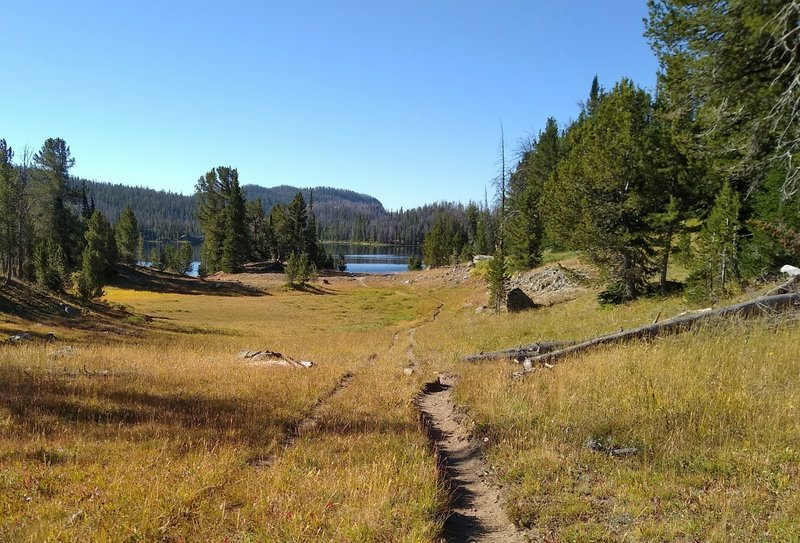 Through meadows, approaching Trapper Lake from the north on Summit Lake Trail.