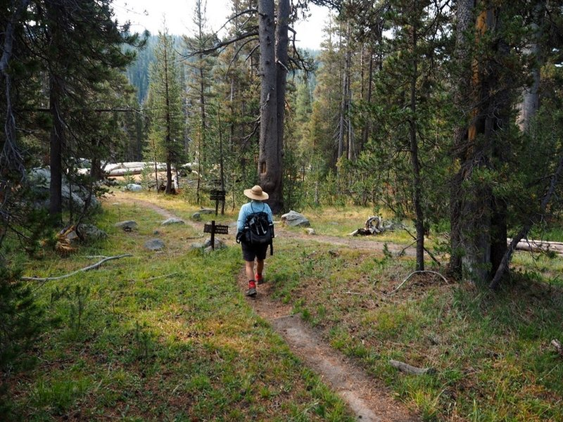 At the junction of the Virginia Canyon Trail and the PCT.