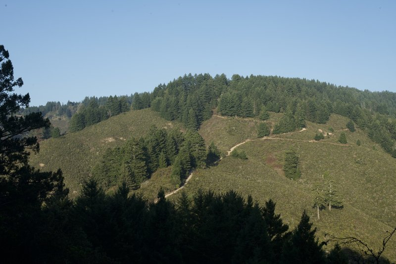 A view of the North Ridge Trail as it descends down the hillside. This is looking back as you climb up the hillside.
