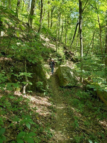 Split rock on Hollow Point Trail.