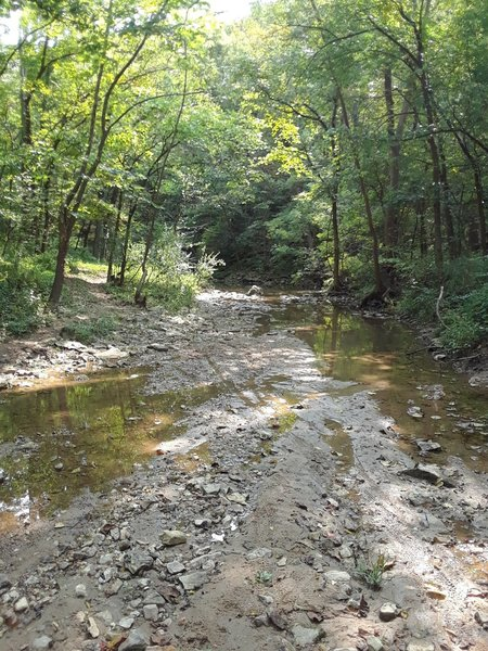 Big Branch Creek