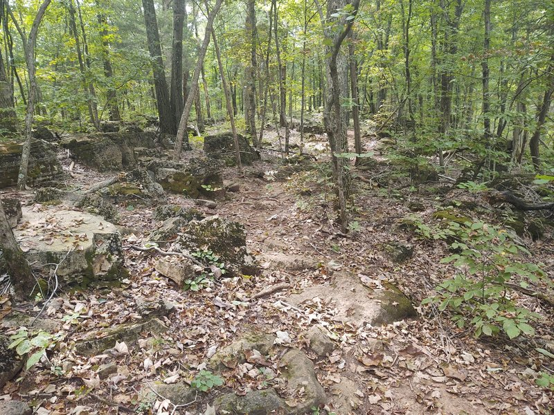 Rock outcropping near midtrail.