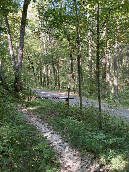 Road Cutthrough on trail.