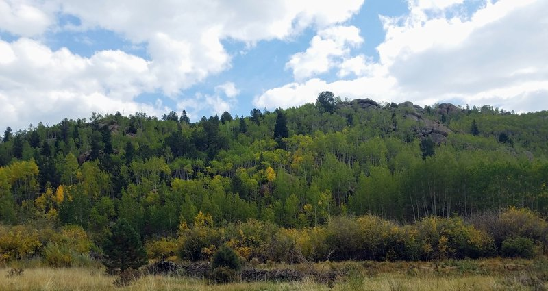 The Turning of Fall Colors Near Crystal Reservoir