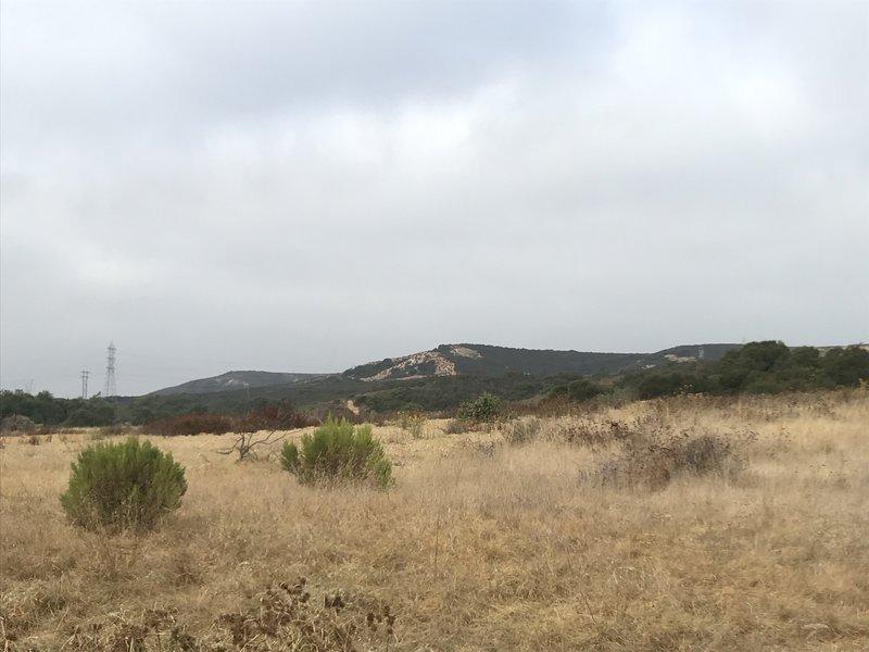 Los Peñasquitos Canyon Trail, north