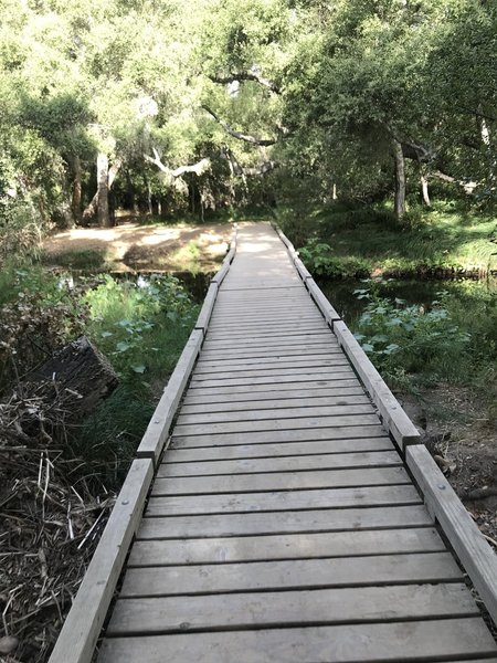 Footbridge at Carson's Crossing