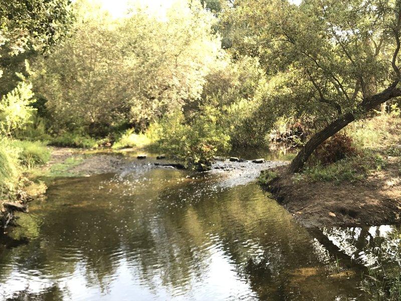 Creek at Carson's Crossing