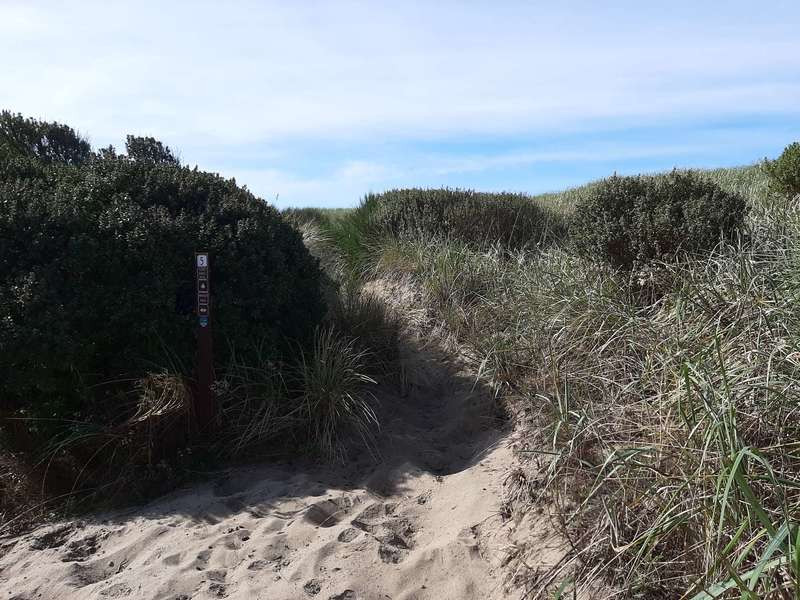 The sandy intersection of Marsh Trail and Dune Ridge Trail