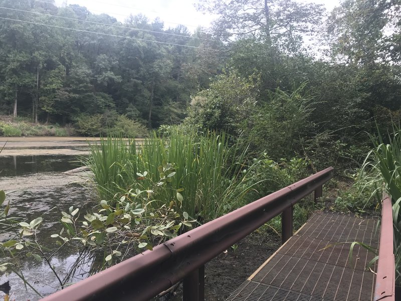 First bridge coming from dam trailhead.