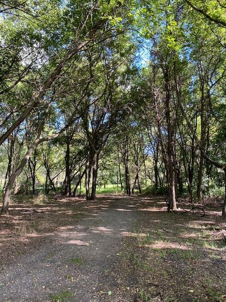 The trail goes from the prairie and into a wooded area, where the terrain is a bit rougher, but still mostly even. There are lots of twists and turns in the trail in the wooded area that aren't all shown in the aerial map. Choose your adventure!