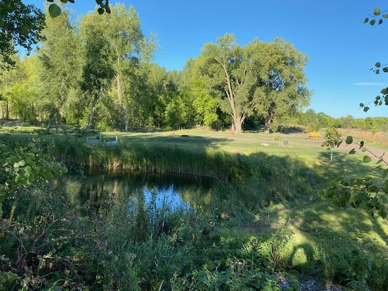 A rustic campground is being developed near the park entrance, planned to open in 2021. The city secured grant funding and donations to help transform this area that was an old gravel pit into an outdoor recreation opportunity for the community.