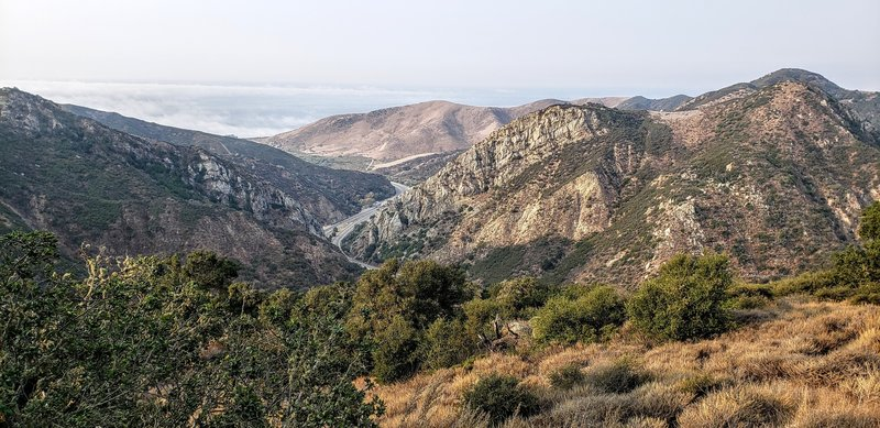 Views from the Trespass trail of the 101 and the ocean under the fog