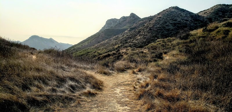 View of a trail split, the Gaviota Peak trail is to the left. Not terribly obvious as you feel like following it around the peak and down.