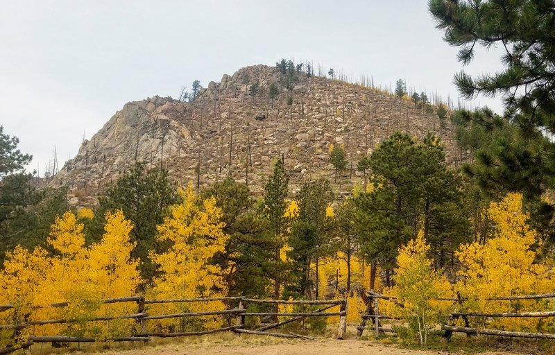 Fall Foliage. View of Signal Butte from TH.