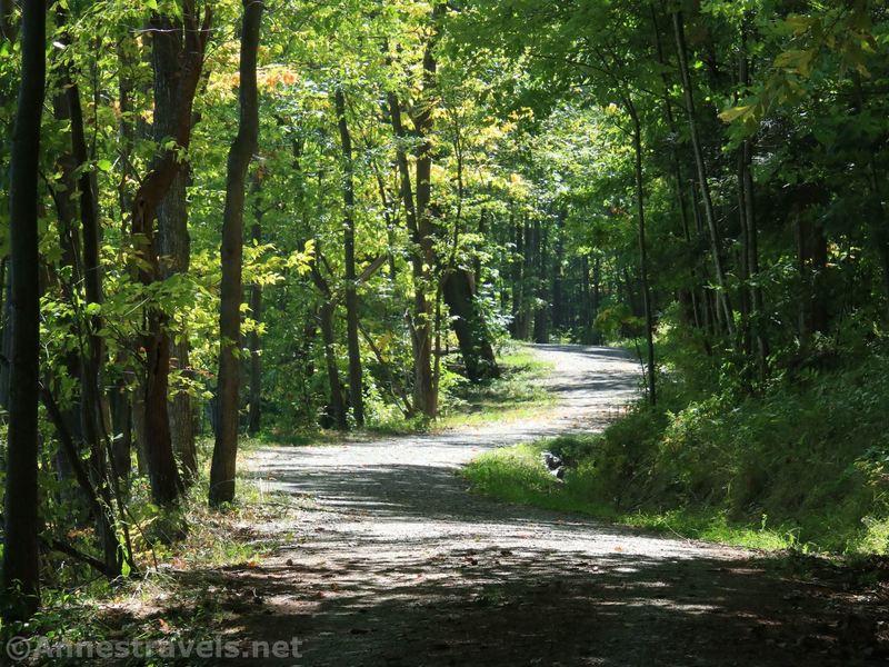 The Canadice Lake Haul Road