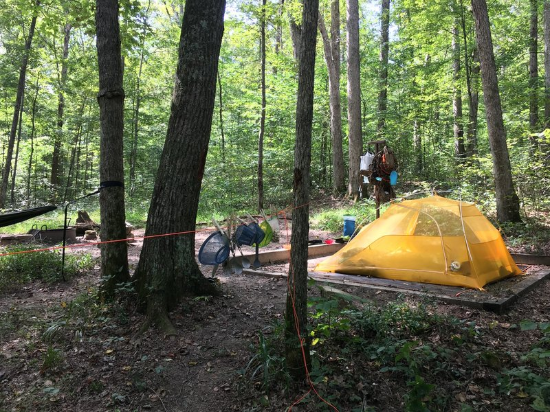 Raymer Hollow campsite