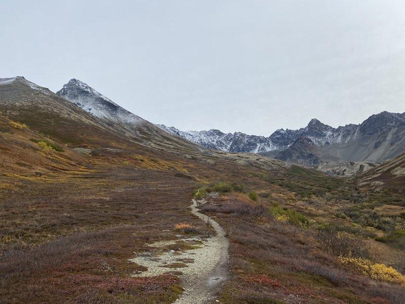 The main trail around the tree line altitude.