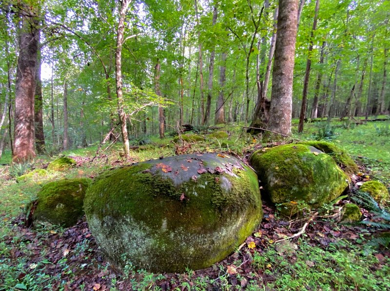 Beautifully rounded boulders along the trail.
