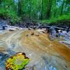 Sandy bottom creek.