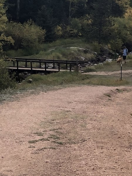 This is the bridge. I think it is at 0.7 miles on the trail.