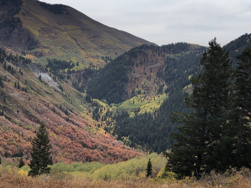 View from the top of Slide Canyon into Slate