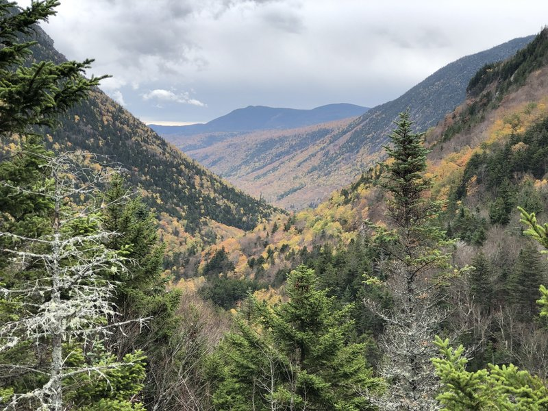 Looking south along Crawford Notch from Elephant Head Viewpoint.