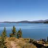 Moose Island and Jackson Lake.