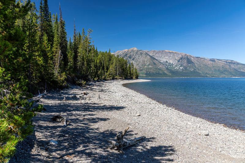 Jackson Lake shore line.