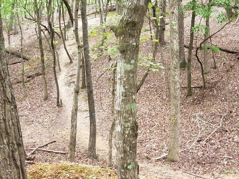 Part of Sugarloaf Trail.