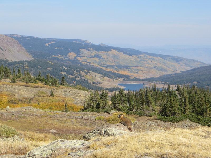 Stillwater Reservoir from the Bear River Trail.