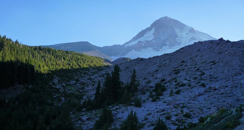 Mount Hood from just below the trail through the High Point.