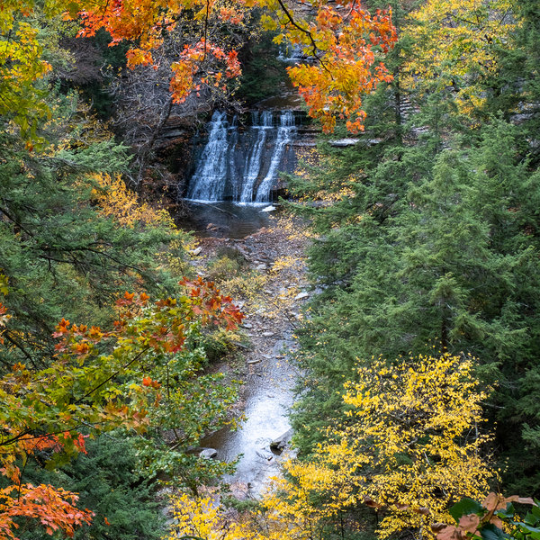 Stony Brook Lower Falls from the East Rim Trail.