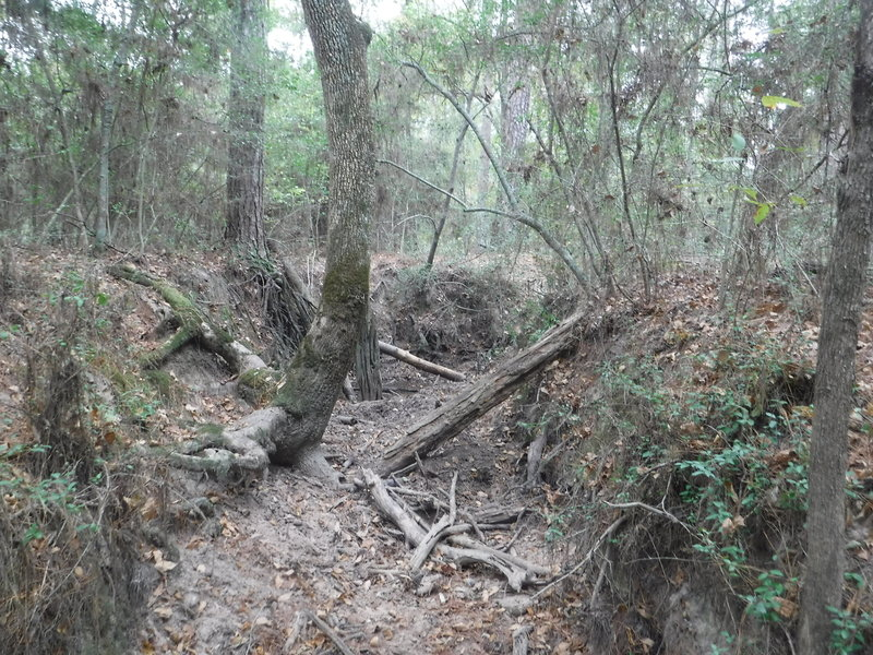 Small creek crossing. If hiked during the rainy season you would get your feet wet. Gentle approach and departure for crossing.
