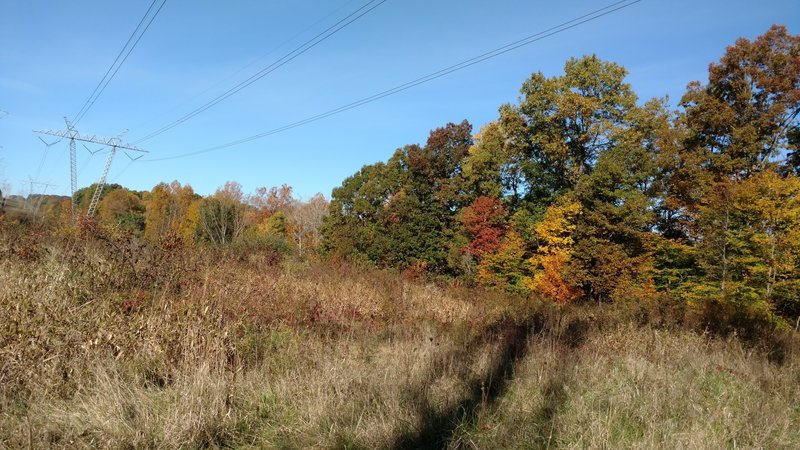 Fall colors on the way to Jaite.