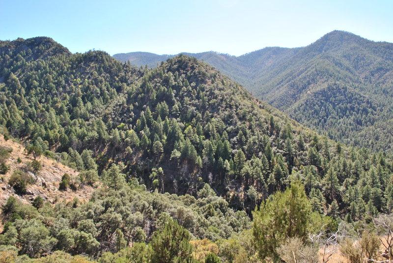 Looking SW at beginning of Mormon Ridge Trail