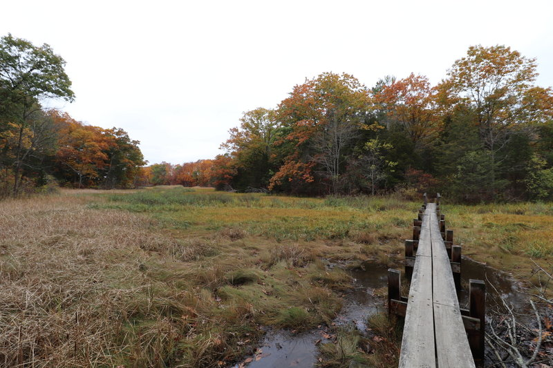 The beginning of the Boardwalk Trail.