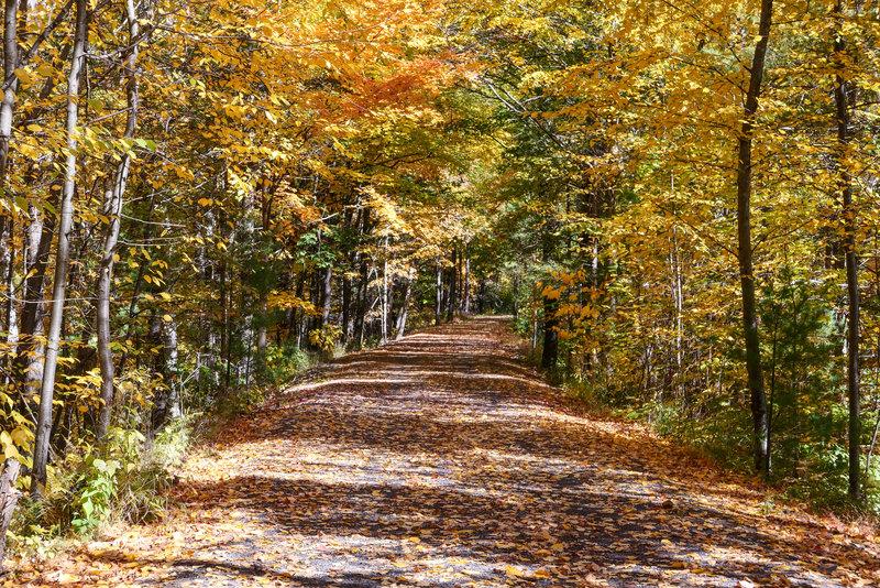 Ashokan Rail Trail