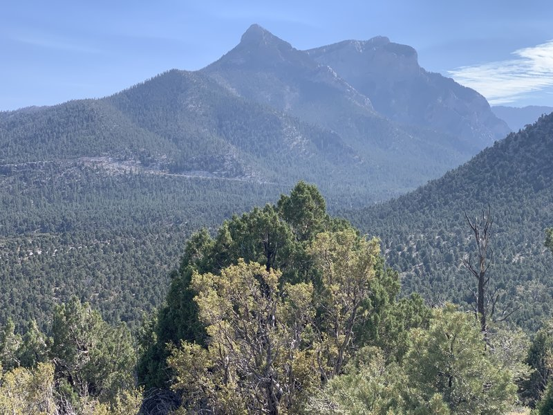 View of Mummy Mountain.