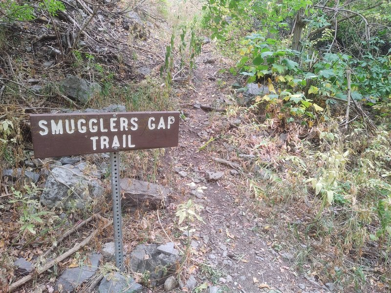 This is the sign you're looking for if starting the trail from the canyon bottom.